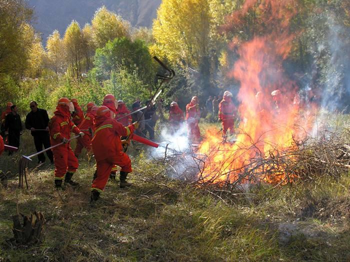 泰安岱岳区持之以恒抓好森林防火工作 各检查站24小时值守