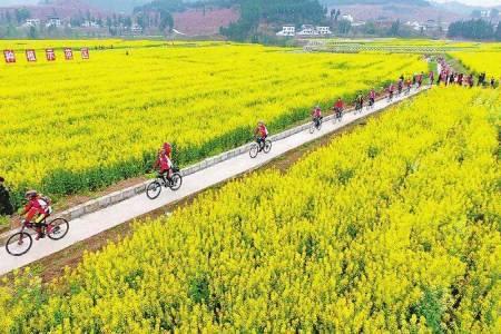 2035年山东全部村庄将基本实现农业农村现代化