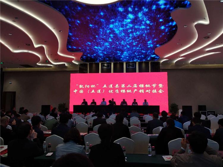 五莲县第二届樱桃节暨中国(五莲)优质樱桃产销对接会开幕
