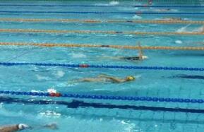 山东省第二十四届运动会游泳预赛在日照开赛