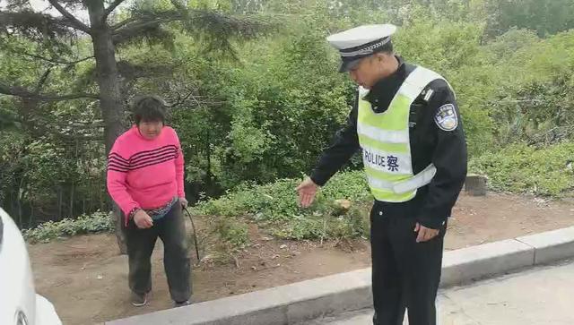 青岛93岁婆婆想吃粽子  六旬儿媳采粽叶迷路高速徒步30里