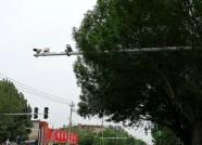 潍坊西园街这个路口交通乱象频现 电子警察明日正式启用