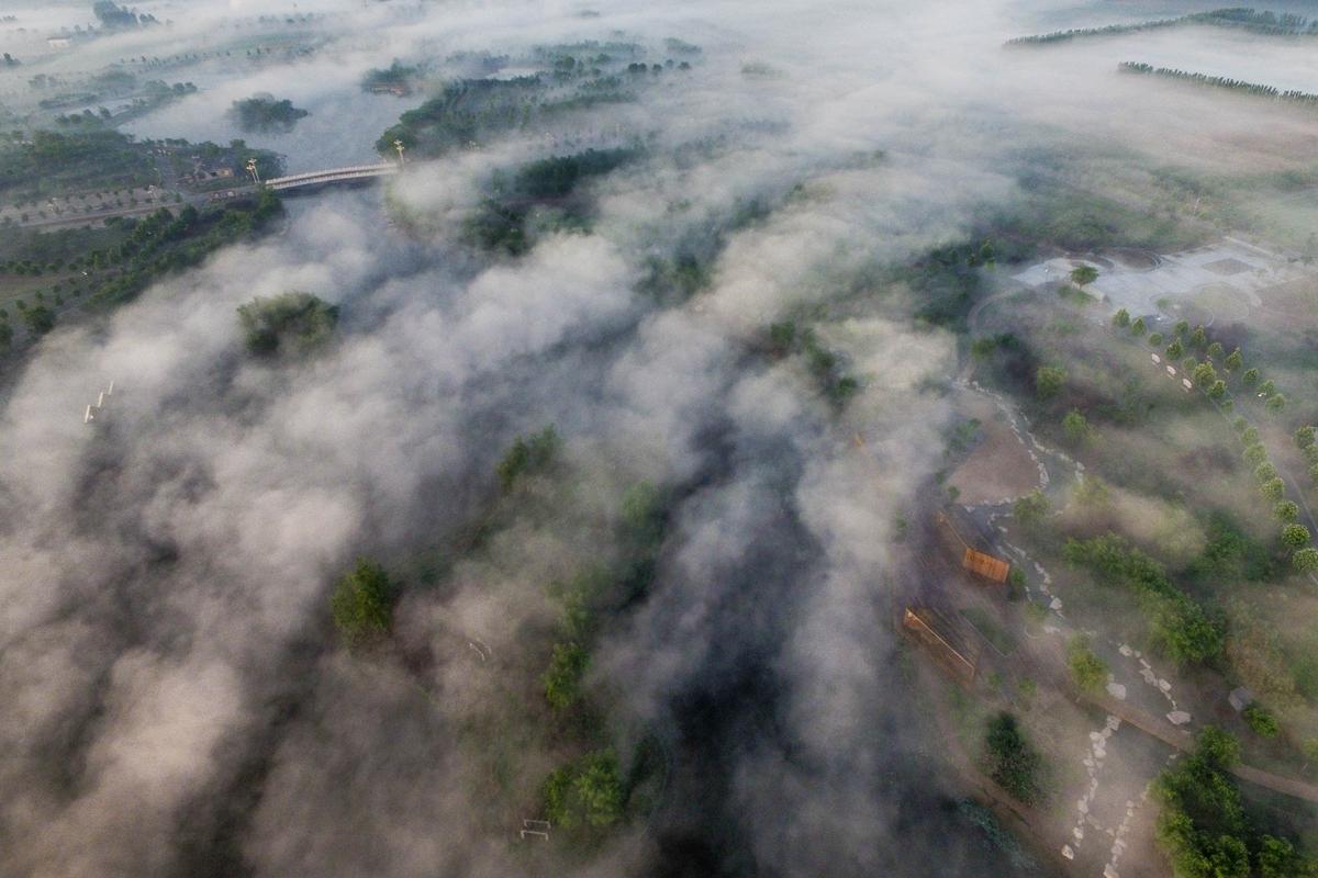 闪电侠来了 ⑳ 丨奇观!航拍邹平禾和湿地 云起云涌如入仙境