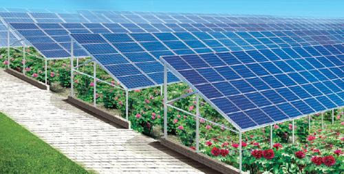到2020年,山东新型农业经营主体规范化水平显著提升