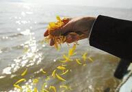 87秒丨海葬时代来临 你清楚流程吗?