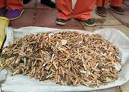 3小时捡4000多个烟头!泰安山口镇9名环卫工为创城助力