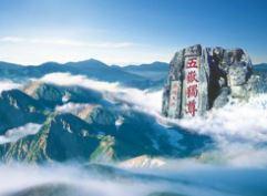 山东打造十大文化旅游目的地品牌 快看有你家乡吗?