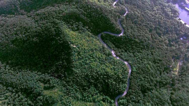64秒丨航拍诸城竹山森林公园 原始森林满目苍翠