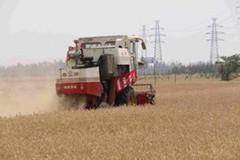 山东三夏农机化生产准备就绪 28万名农机手严阵以待