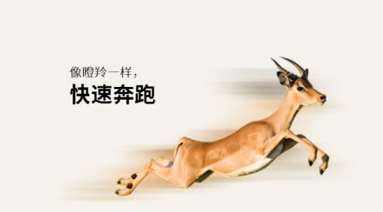 济南17家企业入选山东省第一批瞪羚企业