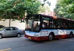 6月6日-12日期间青岛14条公交线路临时调整