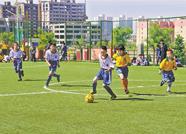 泰安16所学校被推荐为校园足球特色学校