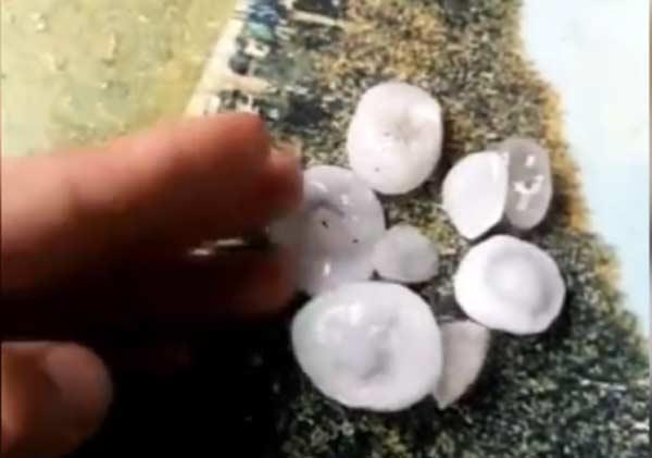 33秒丨滨州部分地区突降冰雹 有一元硬币般大小