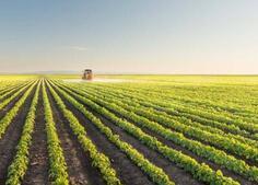 """山东""""六金一利""""重点培养农业产业化联合体"""
