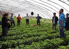 山东培育新型职业农民13万人 认定2.5万人