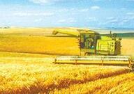 山东:发展农业产业化联合体 构建现代农业经营体系