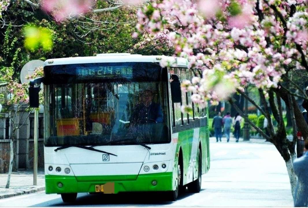青岛公交214路6月23日起优化调整