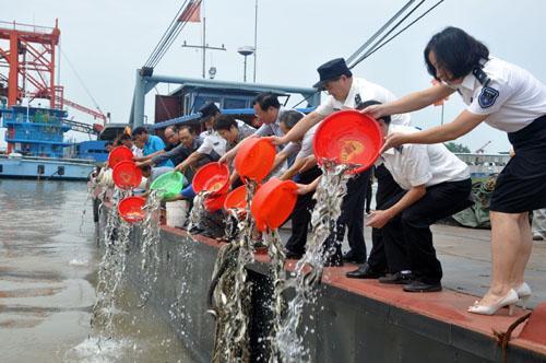山东完成增殖放流海洋水产苗种46.8亿单位