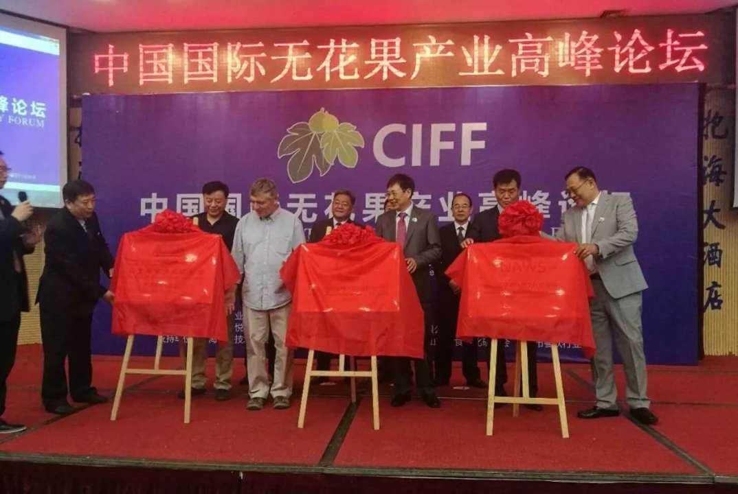 中国国际无花果产业高峰论坛在威海举行
