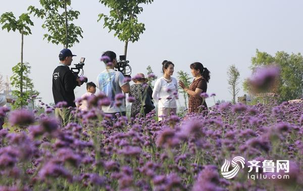 山东电视综艺频道《发现大明星》在台儿庄取景拍摄