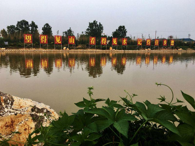 深入持续开展林水大会战 加快建设山青水秀美丽日照