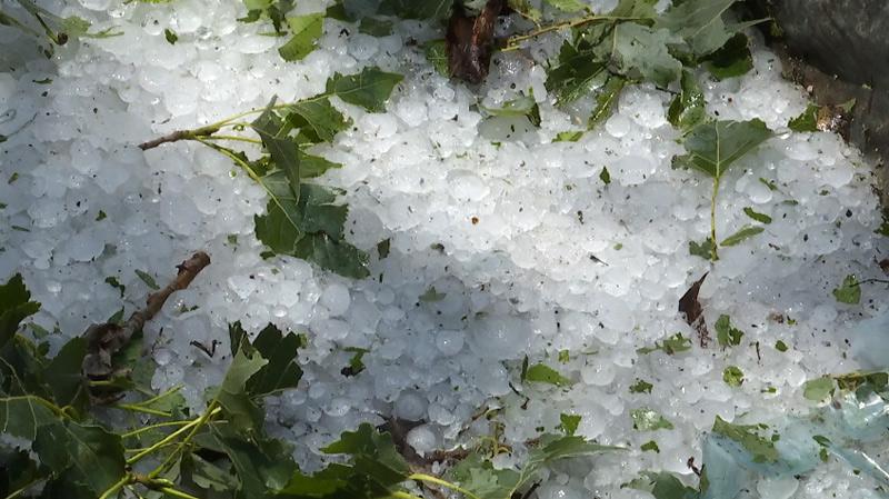 新泰遭冰雹突袭 最大冰雹鸡蛋大小 六村受灾严重