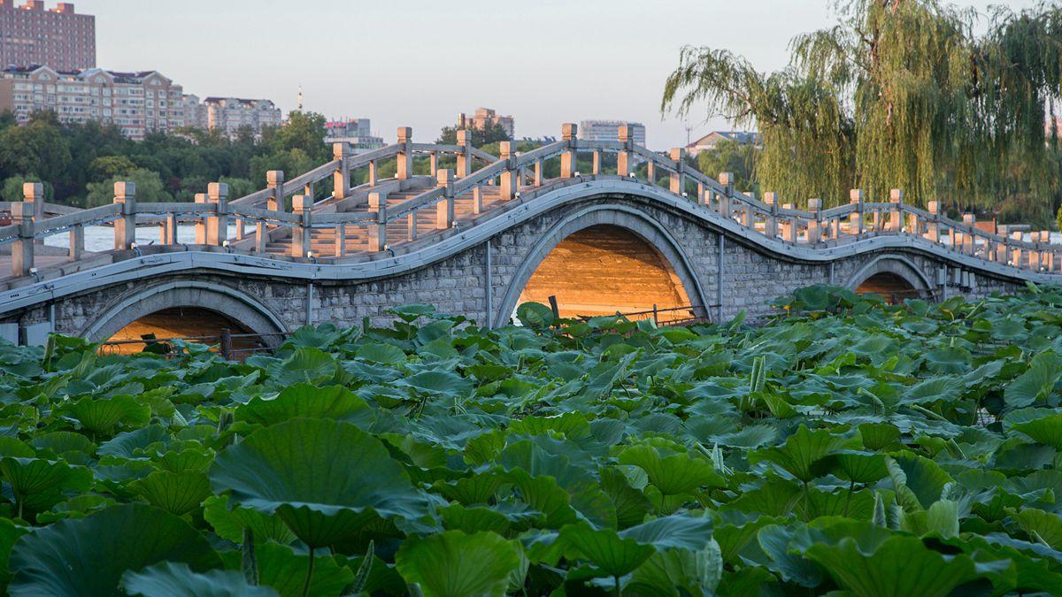 """组图:济南大明湖古连桥现""""金光穿孔""""美景"""