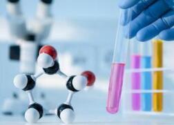 山东医养健康产业确定十大重点领域