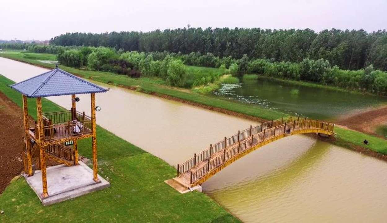 第五届中国·台儿庄运河国家湿地荷花节即将开幕