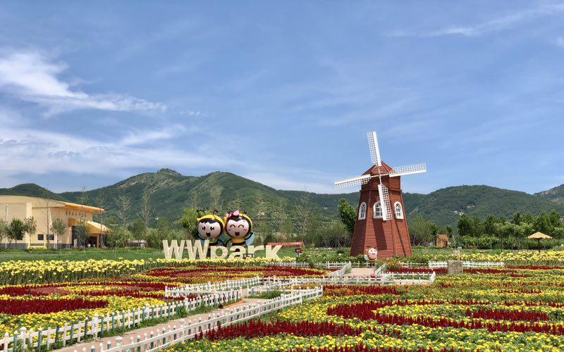 日照莒县嗡嗡乐园打造全省首家蜂产业田园综合体