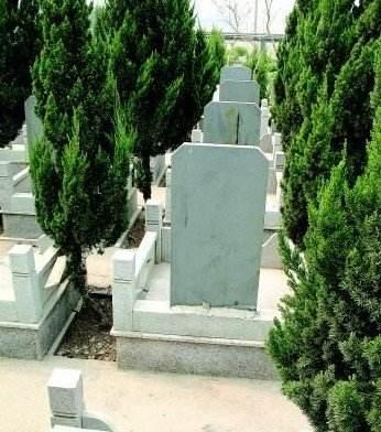 山东12部门印发行动方案 专项整治殡葬领域突出问题