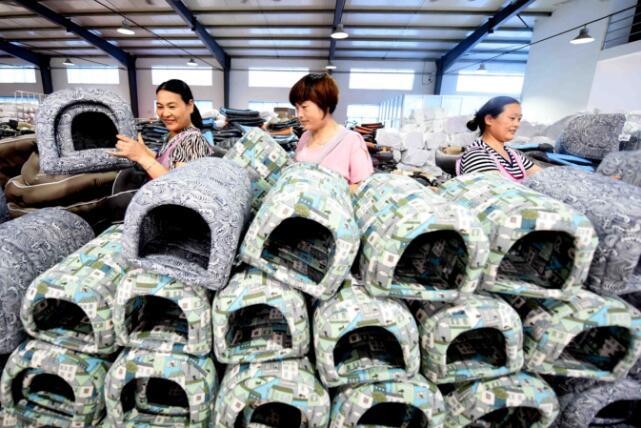 """临沂郯城""""布艺狗窝""""年出口50余万件 俏销20多个国家"""