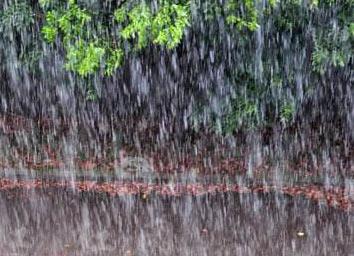 """海丽气象吧丨德州即将被雨""""包围"""" 接连7天雨雨雨"""