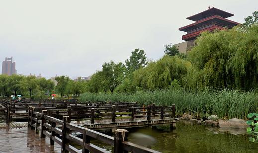 海丽气象吧丨枣庄普降小到中雨局部暴雨 台儿庄降水达51.2毫米
