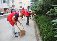 创城在行动丨泰安泰山广场管理处开展志愿服务 清除杂草垃圾