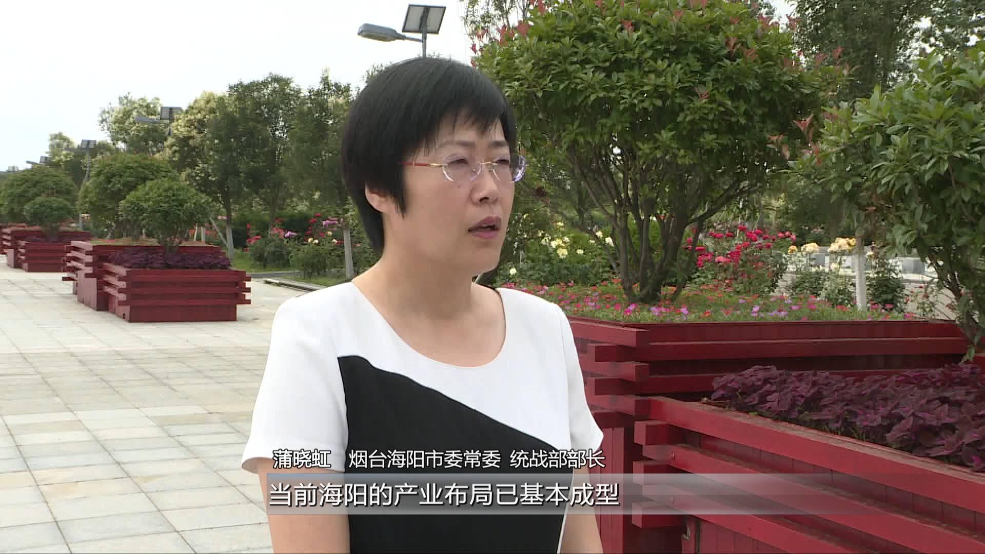 敢领改革风气之先丨海阳统战部部长蒲晓虹:提高招商引资的针对性和精准度