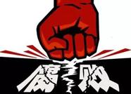 泰安岱岳区纪委上半年查处群众身边的不正之风和腐败问题47起