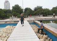 """泰山广场上多了""""便民桥""""!市民不用绕弯啦"""