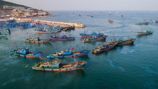 山东调度部署海洋伏季休渔管理中后期工作