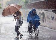 海丽气象吧丨潍坊发布台风蓝色预警 大风暴雨将到注意防范