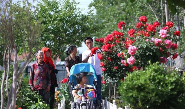 齐鲁最美家庭 | 耗时5年自掏腰包100多万,他带领家人把垃圾湾变大花园