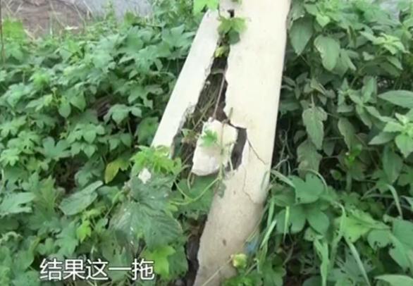 换根电线杆就这么难?章丘村民反映电线杆断裂几个月没结果