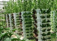 山东着力加快智慧农业发展