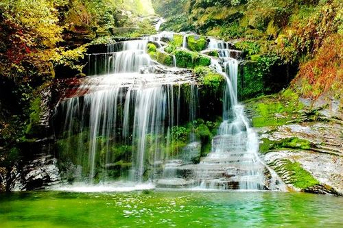 山东:积极构建田园生态系统 到2020年森林覆盖率达20%