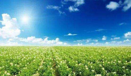到2020年底,山东基本掌握全省农产品产地环境质量状况