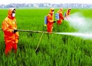 加强耕地保护、倡导化肥减量 潍坊今年要打造这样一批示范县