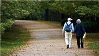 潍坊征集68条老龄事业发展的意见建议