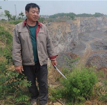 淄川:植绿愚公咬定青山不放松 让废弃矿坑变身淘金地