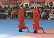 首届泰山国际传统武术大会开幕