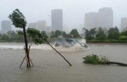 涨知识丨台风再度来袭 为何今年山东台风这么多?
